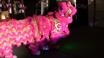 Edmonton Ice on Whyte 2014 - Jing Ying Martial Arts Lion Dance