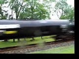 norfolk southern fast freight pig train charleston s.c.