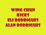 Kicks mma/ufc/extreme/brazil/curitiba/jkd(Thanks 2.700 views)igrejas/lutas/golpes