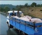Video Ricky e Barabba - Happy pork