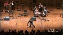 The Swan/Cello:Yo-Yo Ma 白鳥/ヨーヨー・マ - video dailymotion