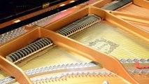 GalacticBear - Feeling Good - Nina Simone Piano Cover