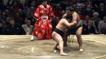 Day 15 Makuuchi recap Sumo Hatsu bastsu Jan 2014