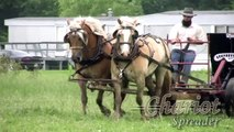 Chariot Spreader - Horse Drawn Manure Spreader