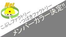 こぶしファクトリー・つばきファクトリー メンバーカラー決定!! ハロプロニュース