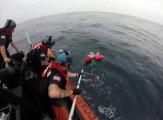 Des gardes-côtes libèrent deux tortues d'un filet de pêche