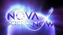 NOVA | The Secret Life of Scientists and Engineers: Michio Kaku | PBS