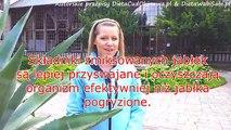 Zamami Video Dailymotion