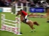 le cheval : cross, dressage, cso 2.wmv