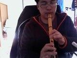 1st Flute video -  Can You Feel The Love Tonight (Lion King) - Elton John - Arranged by tkviper