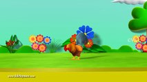 Birds Name for Children, birds video for kid, learn bird