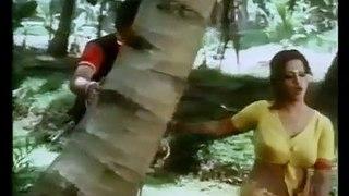 Do Musafir (1978) Full Hindi Movie   Shashi Kapoor, Rekha, Ashok Kumar, Prem Chopra