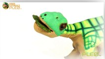 PLEO rb - How and When to Feed