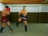 Jerome Le Banner - Spinning back kick