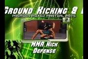 Mixed Martial Arts  Advanced  Ground and Kicking Defenses  MMA Kick Defense