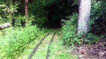 Sassafras Gulch Lumber Co. Back Yard Railroad
