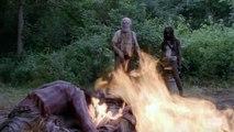 The Walking Dead    Hershel Greene Tribute