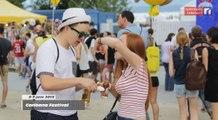 La caméra en balade - Caribana Festival 2015 (9 juin 2015)