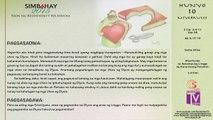 Simbahay | Hunyo 10, 2015 | Miyerkules sa Ika-10 Linggo ng Karaniwang Panahon