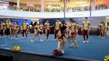 Legacy All Stars Cheerleading - Coed Level 5, CHARM Cheerleading Championships 2014