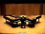 Piano Phase (solo) - First solo performance ever