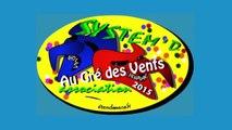 """System'D """"Au Gré des Vents"""" Carnaval JOUR Cholet 2015"""