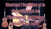 """""""HISTOIRES DE GUITARES"""" Gaëdic CHAMBRIER plus de 30 guitares sur scène!"""