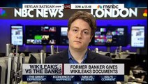 Wikileaks Vs The Banks & Tax Evasion - Dylan Ratigan