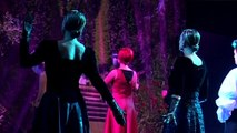 Alice nel paese delle meraviglie il Musical Trailer 2009/2010 Enrico Botta Live
