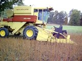 Soybean Harvest 2009- Pierce Farms