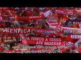 Miguel Gameiro - Benfica Sempre (nova música do Benfica) com legenda embutida