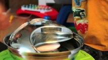 Fontaines d'eau pour chiens et chats Pioneer Pet products