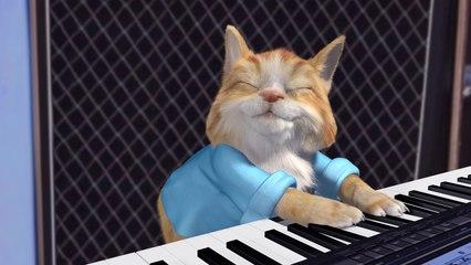Keyboard cat version Ronronne, encore plus mignon!!!