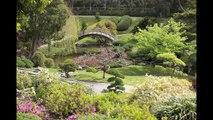 A Peaceful Garden, the Japanese Garden at The Huntington