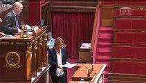Séance publique du Jeudi 11 juin 2015 à l'Assemblée nationale sur les classes bilangues allemand