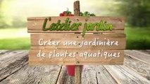 L'atelier jardin : comment créer une jardinière de plantes aquatiques ?