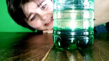 Xander Sims 4th Grade Oil and Water Science Project | science projects, | science experiments,