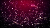 After Effects Project Files - Underwater Bubble Logo Reveal - VideoHive 9085362