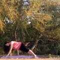 Yoga Flow ( Plank, Side Plank, Wild Thing Pose)