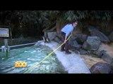 Anne nettoie l'enclos des manchots - S03E31