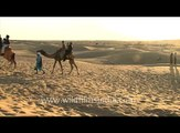 Sam Sand Dunes - Camel Safari