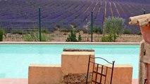 Vente propriété de prestige / gîtes Haute Provence - Annonces immobilières