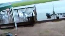 Komik Video - Tuttuğu balığı köpek balığı yuttu
