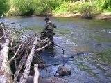 Ловля речной форели на спиннинг. Trout fishing
