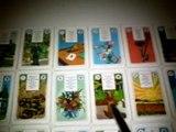 Video cartas lenormand