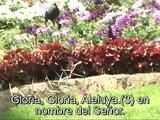 GLORIA, GLORIA, ALELUYA