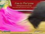Alas de mariposa 7 De la rosa y silvetina