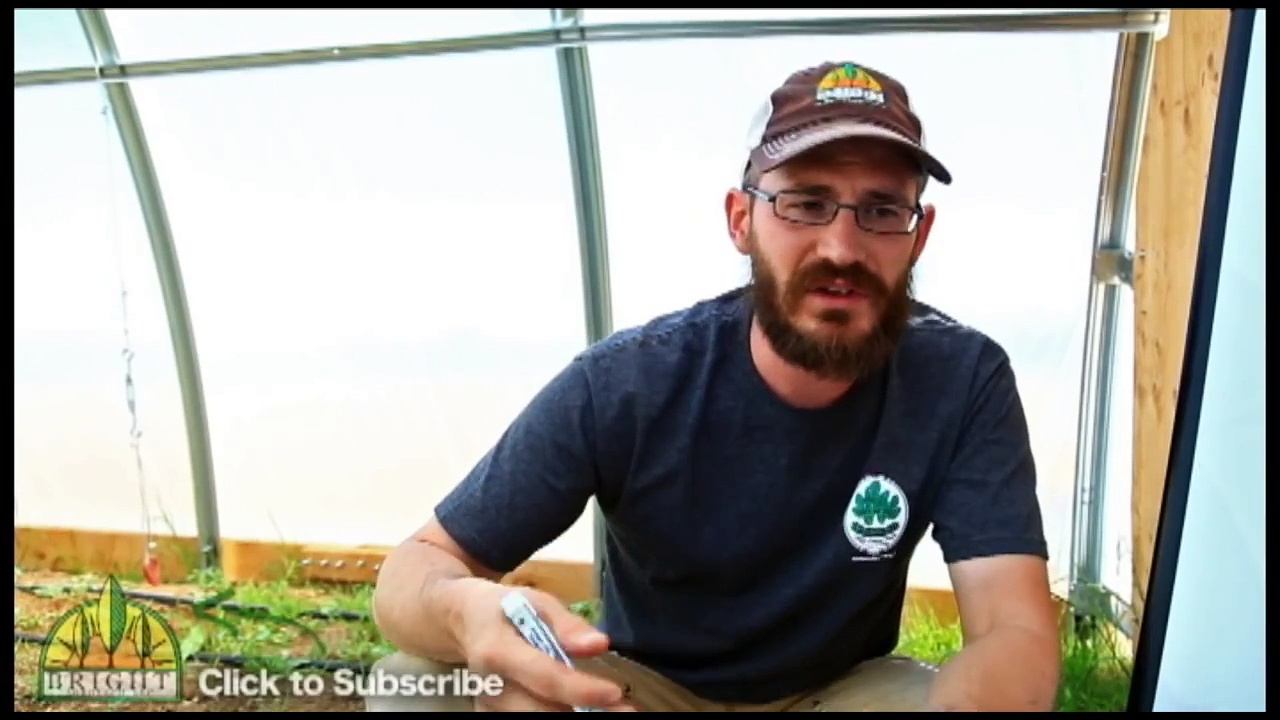 Sizing a Pump for Your Aquaponics or Hydroponics System