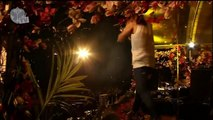 Steve Aoki @ Tomorrowland 2013 Final Amazing (Flux Pavilion & Steve Aoki - Get Me Out Of Here)