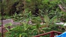 Monsoon Arrival - Sri Lanka [Arrivée de la mousson - Sri Lanka]